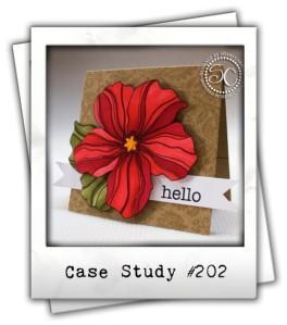 CSC202-Inspiration